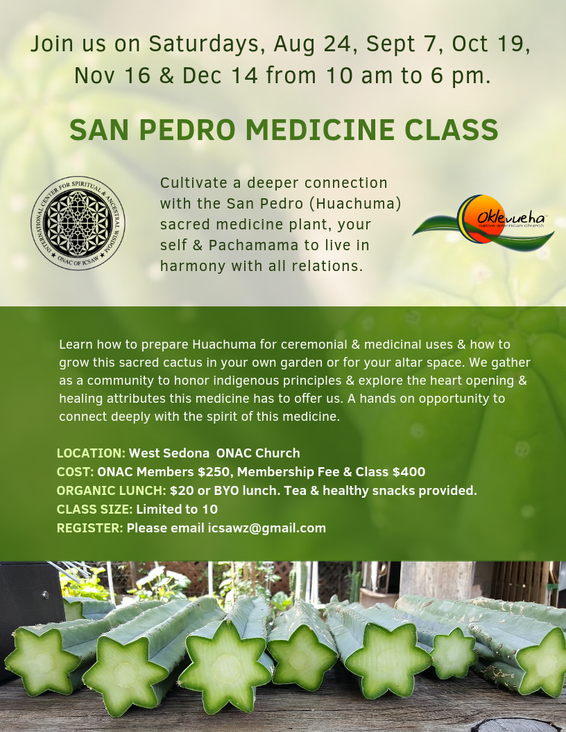 2.1 2019 SAN PEDRO MEDICINE CLASSES